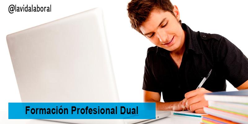 formacion profesional dual