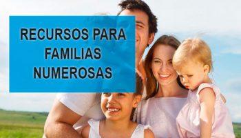 recursos familia numerosa